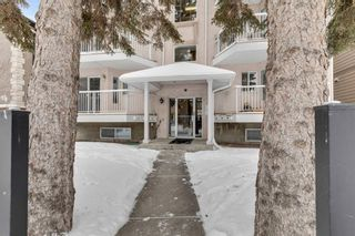 Photo 1: 302 215 17 Avenue NE in Calgary: Tuxedo Park Apartment for sale : MLS®# A1071484