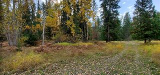 Photo 25: 789 Shuswap River Drive, in Lumby: House for sale : MLS®# 10240114