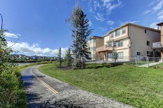Photo 44: 147 Taracove Landing NE in Calgary: Taradale Detached for sale : MLS®# A1144169