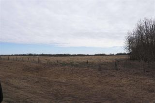 Photo 7: TWP 481 HWY 795: Rural Leduc County Rural Land/Vacant Lot for sale : MLS®# E4244581