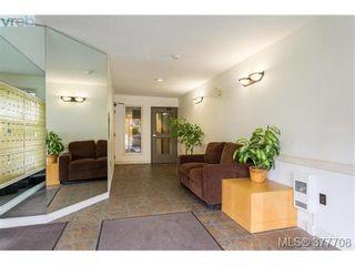 Photo 4: 110 2529 Wark St in VICTORIA: Vi Hillside Condo for sale (Victoria)  : MLS®# 758419