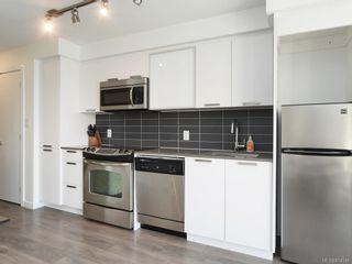 Photo 10: 312 517 Fisgard St in : Vi Downtown Condo for sale (Victoria)  : MLS®# 874546