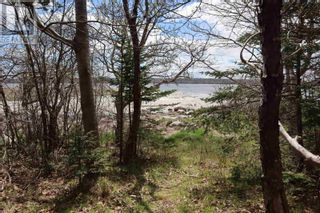 Photo 6: Lot St Catherines River Road in Port Joli: Vacant Land for sale : MLS®# 202111302