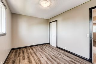 Photo 29: 416 McKerrell Place SE in Calgary: McKenzie Lake Detached for sale : MLS®# A1112888