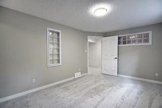 Photo 49: 11575 13 Avenue in Edmonton: Zone 16 House for sale : MLS®# E4248039