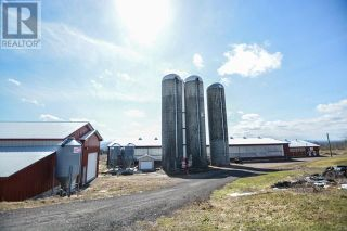 Photo 15: 47260 Homestead RD in Steeves Mountain: Agriculture for sale : MLS®# M133892