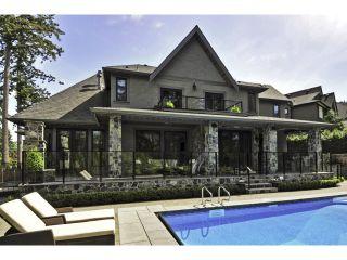 "Photo 50: 2911 146 Street in Surrey: Elgin Chantrell House for sale in ""ELGIN RIDGE"" (South Surrey White Rock)  : MLS®# F1425975"