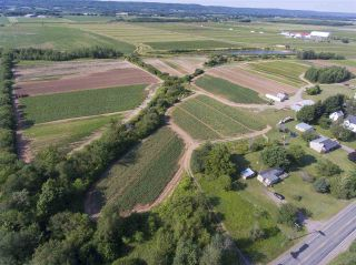 Photo 17: 2969 Highway 1 in Aylesford East: 404-Kings County Farm for sale (Annapolis Valley)  : MLS®# 201919454