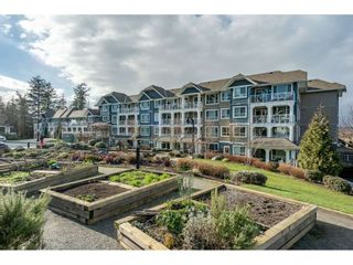 """Photo 24: 204 16380 64TH Avenue in Surrey: Cloverdale BC Condo for sale in """"The Ridge at Bose Farm"""" (Cloverdale)  : MLS®# R2535552"""