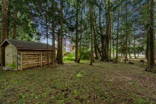 Photo 11: 13671 16 Avenue in Surrey: Crescent Bch Ocean Pk. House for sale (South Surrey White Rock)  : MLS®# R2535923