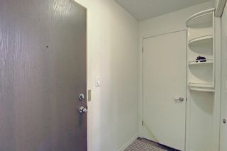 Photo 26: 202 1513 26th Avenue SW 26th Avenue SW in Calgary: South Calgary Apartment for sale : MLS®# A1117931