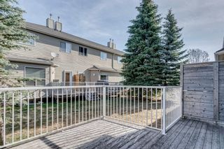 Photo 22: 40 Mt Aberdeen Manor SE in Calgary: McKenzie Lake Row/Townhouse for sale : MLS®# A1100285