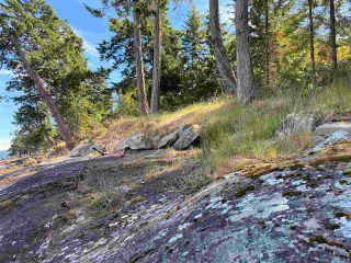 Photo 27: 890 EAGLES REST Lane: Galiano Island Land for sale (Islands-Van. & Gulf)  : MLS®# R2589986