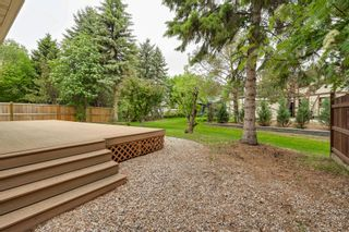 Photo 6: 17428 53 Ave NW: Edmonton House for sale : MLS®# E4248273