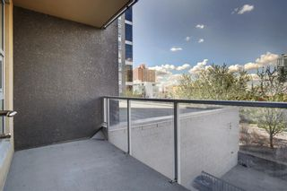 Photo 26: 303 211 13 Avenue SE in Calgary: Beltline Apartment for sale : MLS®# A1108216