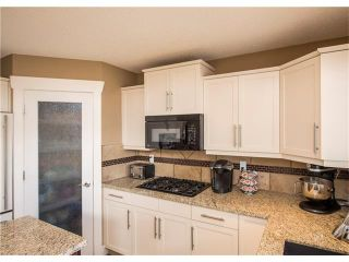 Photo 13: 34 CHAPALA Court SE in Calgary: Chaparral House for sale : MLS®# C4108128