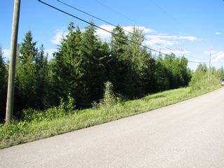 Photo 5: 5049 Ivy Rd: Eagle Bay Land Only for sale (SHuswap)  : MLS®# 10201912
