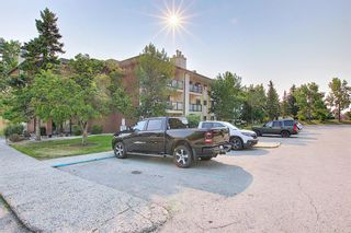 Photo 36: 3102 393 Patterson Hill SW in Calgary: Patterson Apartment for sale : MLS®# A1136424