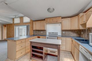 Photo 9: 214 Erin Woods Circle SE in Calgary: Erin Woods Detached for sale : MLS®# A1120105