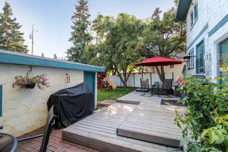 Photo 35: 143 Silver Brook Road NW in Calgary: Silver Springs Detached for sale : MLS®# A1141284