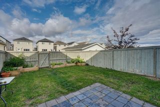 Photo 26: 42 COPPERPOND Place SE in Calgary: Copperfield Semi Detached for sale : MLS®# C4270792