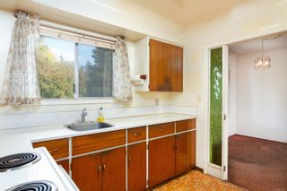 Photo 14: 4101 Carey Rd in : SW Marigold House for sale (Saanich West)  : MLS®# 857802