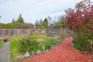 Photo 38: 3187 Fifth St in : Vi Mayfair House for sale (Victoria)  : MLS®# 871250