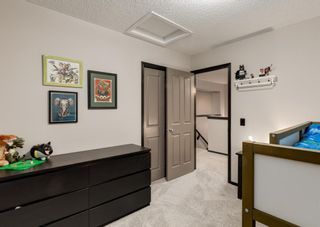 Photo 29: 69 ELGIN MEADOWS Link SE in Calgary: McKenzie Towne Detached for sale : MLS®# A1098607