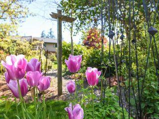 Photo 60: 1476 Jackson Dr in COMOX: CV Comox Peninsula House for sale (Comox Valley)  : MLS®# 810423