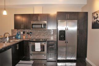 Photo 5: 303 10808 71 Avenue in Edmonton: Zone 15 Condo for sale : MLS®# E4222829