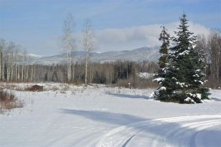 """Photo 16: 258 POPLAR PARK Road in New Hazelton: Hazelton House for sale in """"KISPIOX VALLEY"""" (Smithers And Area (Zone 54))  : MLS®# R2537919"""
