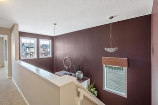 Photo 25: 12 Skyview Springs Crescent NE in Calgary: Skyview Ranch Detached for sale : MLS®# A1067284