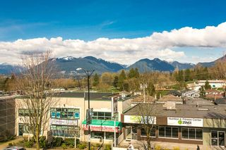 """Photo 15: 303 4710 HASTINGS Street in Burnaby: Capitol Hill BN Condo for sale in """"ALTEZZA"""" (Burnaby North)  : MLS®# R2053394"""
