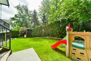 Photo 30: 24302 104 AVENUE in Maple Ridge: Albion House for sale : MLS®# R2460578