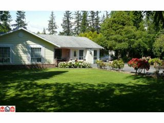 Photo 7: 16909 23RD Avenue in Surrey: Pacific Douglas House for sale (South Surrey White Rock)  : MLS®# F1014660