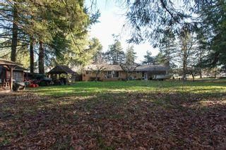 "Photo 10: 9671 161A Street in Surrey: Fleetwood Tynehead House for sale in ""TYNEHEAD AREA"" : MLS®# R2597946"