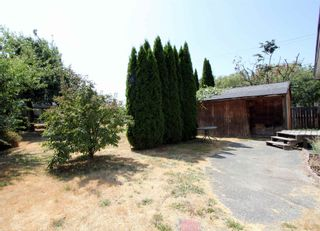 Photo 25: 41350 YARROW CENTRAL Road: Yarrow House for sale : MLS®# R2604550