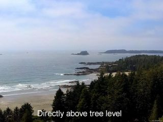 Photo 11: 1220 Lynn Rd in TOFINO: PA Tofino Land for sale (Port Alberni)  : MLS®# 841948