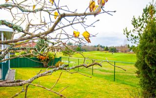 Photo 30: 611 Lowry's Rd in : PQ French Creek House for sale (Parksville/Qualicum)  : MLS®# 860767