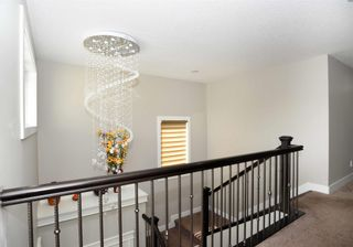 Photo 19: 4110 CHARLES Link in Edmonton: Zone 55 House for sale : MLS®# E4256267