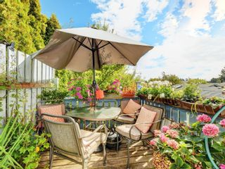 Photo 21: 447 S Stannard Ave in : Vi Fairfield West House for sale (Victoria)  : MLS®# 885268