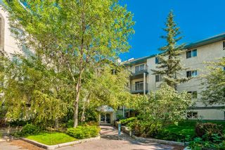 Photo 20: 114 11 Dover Point SE in Calgary: Dover Apartment for sale : MLS®# A1125915
