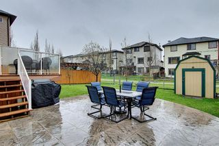 Photo 44: 73 Canals Circle SW: Airdrie Detached for sale : MLS®# A1104916