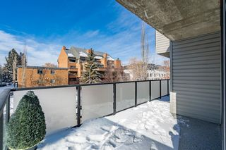 Photo 19: 306 1732 9A Street SW in Calgary: Lower Mount Royal Apartment for sale : MLS®# A1072232