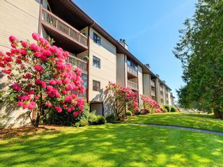 Photo 1: 310 69 W Gorge Rd in : SW Gorge Condo for sale (Saanich West)  : MLS®# 877674