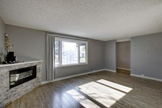 Photo 14: 4604 Maryvale Drive NE in Calgary: Marlborough Detached for sale : MLS®# A1090414