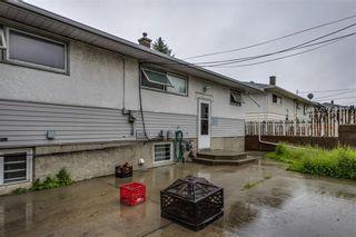 Photo 23: 4823 1 Street NE in Calgary: Greenview Detached for sale : MLS®# C4306006