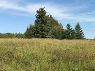 Photo 24: 57525 Rg Rd 214: Rural Sturgeon County Rural Land/Vacant Lot for sale : MLS®# E4237624