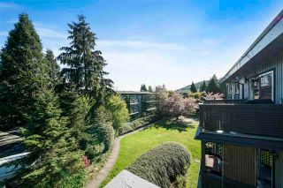 Photo 20: 243 202 WESTHILL Place in Port Moody: College Park PM Condo for sale : MLS®# R2575361