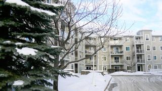 Photo 2: 322 260 Shawville Way SE in Calgary: Shawnessy Apartment for sale : MLS®# A1073595